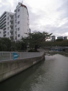 江東区のウォーターフロントの売り中古マンション