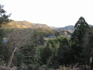 千葉県居抜き店舗からの景色